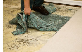 removing wet carpet