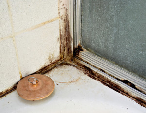 water damage san antonio tx